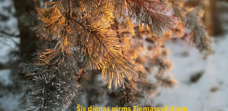 ace Logistics Latvia novēlējums Ziemassvētkos