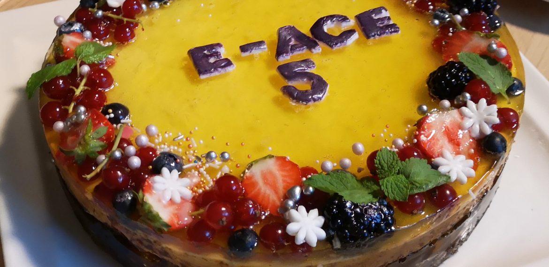E-ACE sitēmas svinības, jubilejas torte